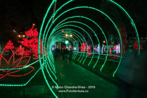 Bogota Colombia - Christmas Lights on the popular Plaza Usaquen