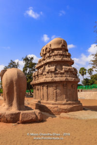 Mahabalipuram, India: 7th Century AD Nakula Sahadeva Ratha and Elephant