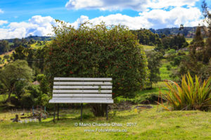 White Garden Bench on the Andes Mountains in Colombia, South America