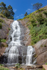Kodaikanal, South India - Silver Cascade Falls Located On The Ghat Road At An Altitude Of ABout 5900 Feet Above Mean Sea Level