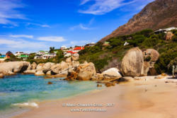 Boulders Beach - South Africa © Mano Chandra Dhas