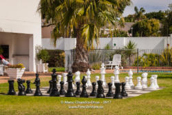 Open-air Chess in the garden © Mano Chandra Dhas