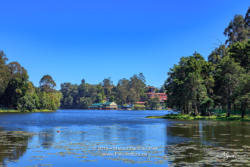 Kodaikanal, South India - Looking Across Kodaikanal Lake Towards The Boathouse And Carlton Hotel, In The Colonial Town In The State Of Tamil Nadu