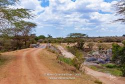 Mara Bridge 2