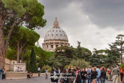 Vatican-8